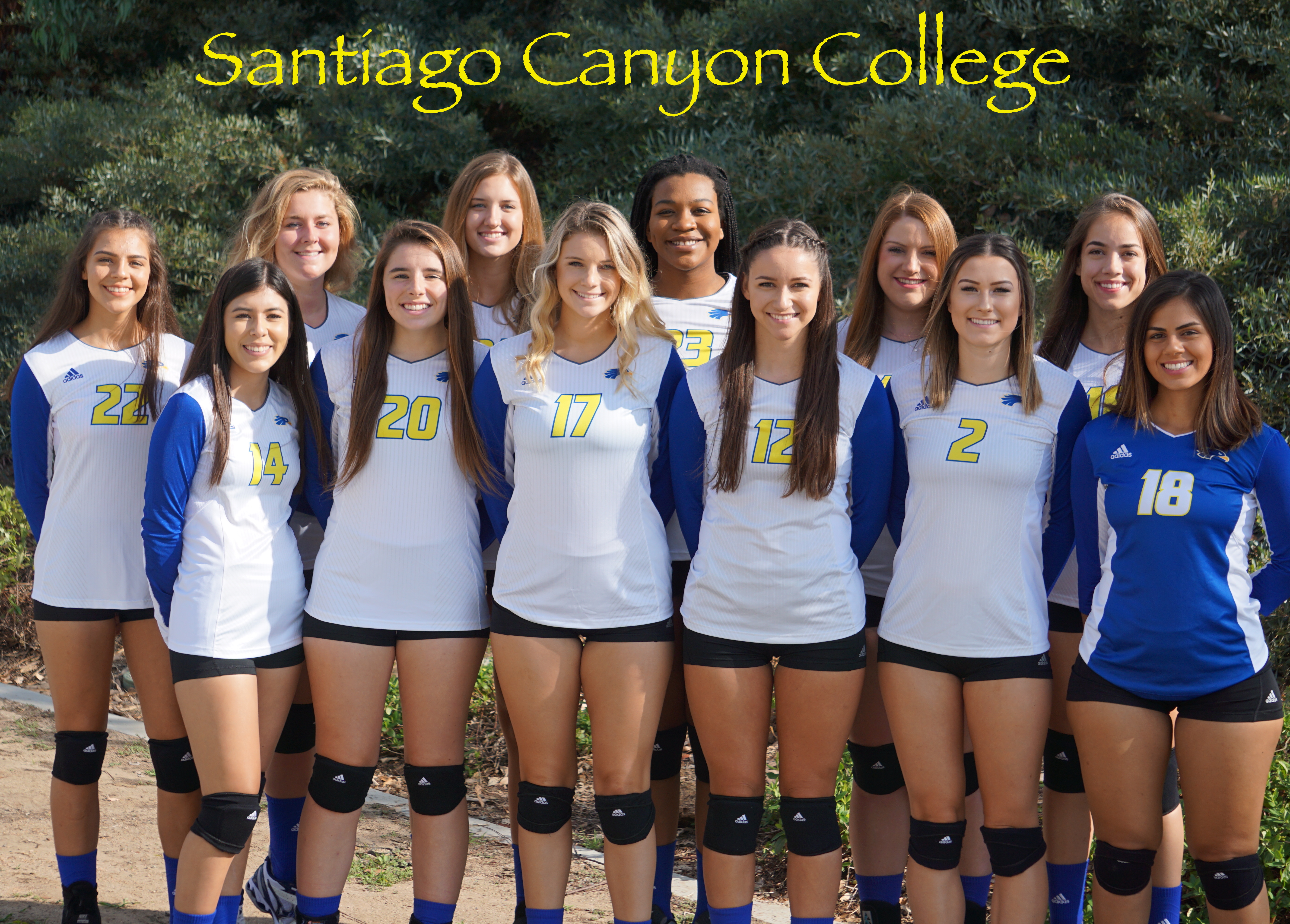 Women S Volleyball Roster
