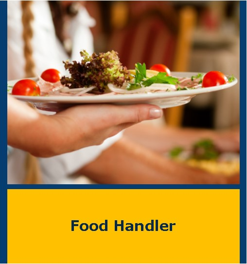 Food Handler Flyer